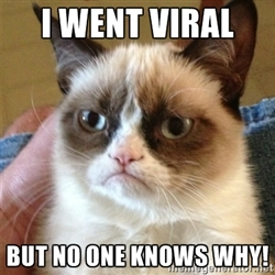 grumpy_cat_viral_meme