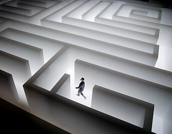 Small Business Leader in a Maze
