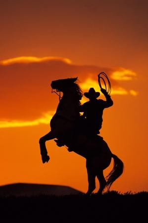 cowboy sillouette